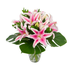 Pink and Green Lily Flower Arrangement in Auckland NZ