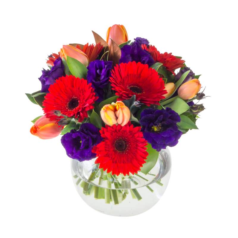 gerbera floral arrangement in Browns Bay Auckland